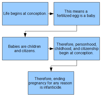 Life begins at conception. This means a  fertilized egg is a baby. Babies are children and citizens. Therefore, personhood, childhood, and citizenship begin at conception. Therefore, ending pregnancy for any reason  is infanticide.